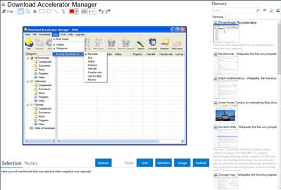 Download Accelerator Manager - Flamory bookmarks and screenshots