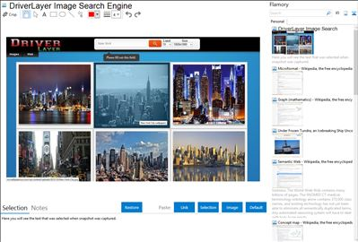 DriverLayer Image Search Engine - Flamory bookmarks and screenshots