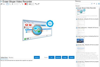 Evaer Skype Video Recorder - Flamory bookmarks and screenshots
