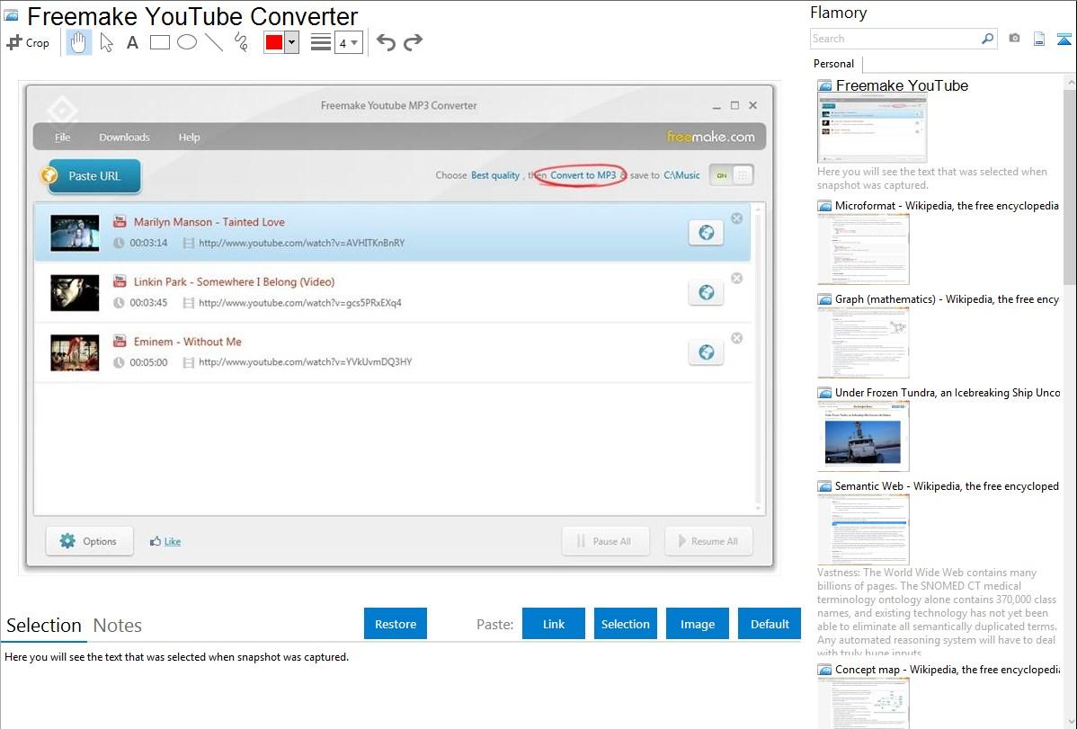 Freemake YouTube Converter integration with Flamory