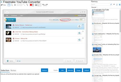 Freemake YouTube Converter - Flamory bookmarks and screenshots