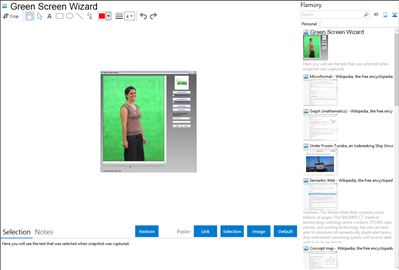 Green Screen Wizard - Flamory bookmarks and screenshots