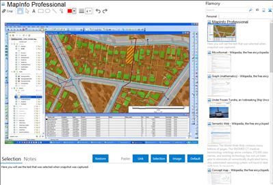 MapInfo Professional - Flamory bookmarks and screenshots