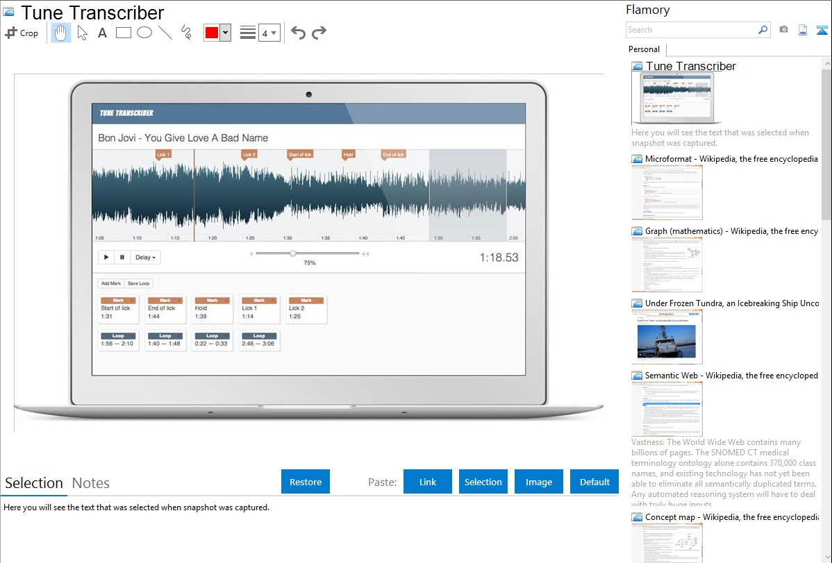 Tune Transcriber integration with Flamory