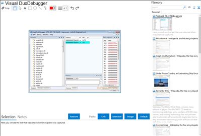 Visual DuxDebugger - Flamory bookmarks and screenshots